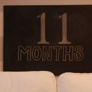 11 Months to Reggae Marathon 2020